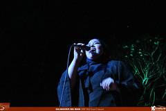 Salamander Big Band Mid Year Concert 2017 (19)