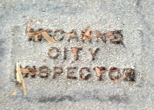 McCAnne City Inspector Los Feliz Los Angeles