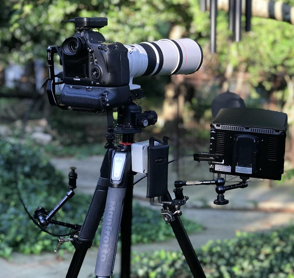 IMG_E4223 | My Canon [refurbished] EF 400mm f/5 6L USM Lens