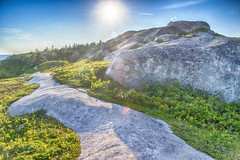 Polly's Cove Hiking Trail