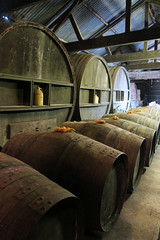 Barrels in the cidery