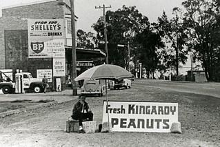Fresh Kingaroy Peanuts