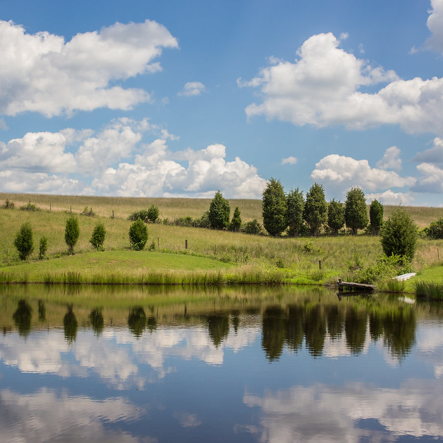 Farm Pond, Canon EOS 6D, Canon EF 40mm f/2.8 STM