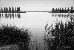 le lac de Vesoul