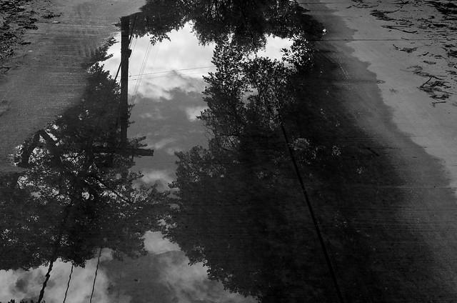 Reflection in a puddle, Pentax K-5, smc PENTAX-DA 35mm F2.4 AL