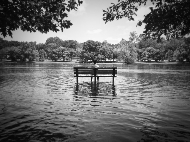 Summer Flood, Apple iPhone, iPhone 7 Plus back camera 3.99mm f/1.8