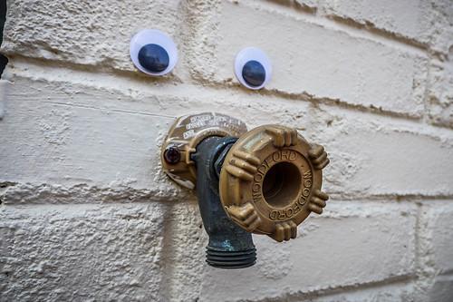 Googly-Eye Bombing Downtown Greenville-102