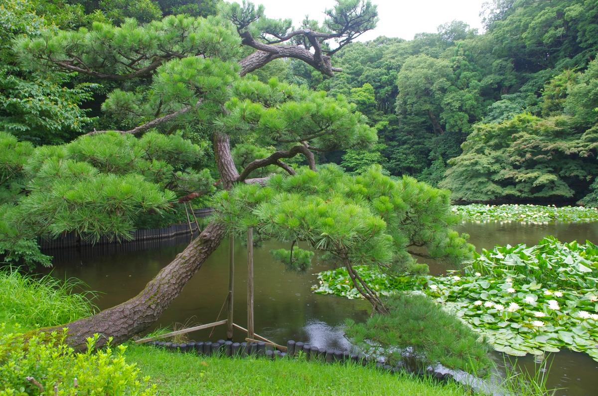 Tokyo 35296165933_5a939d327d_o