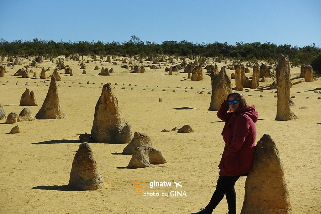 【西澳伯斯景點】2020尖峰石陣一日遊(Pinnacles)必玩拍不停.南本國家公園(Nambung National Park)+休息站CAFE VERGE 301咖啡廳|澳洲紅蘿蔔蛋糕|超美秘境海邊 @GINA環球旅行生活