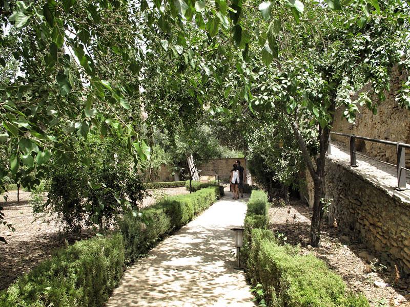 baños árabes ronda_patrimonio_rehabilitación jardines