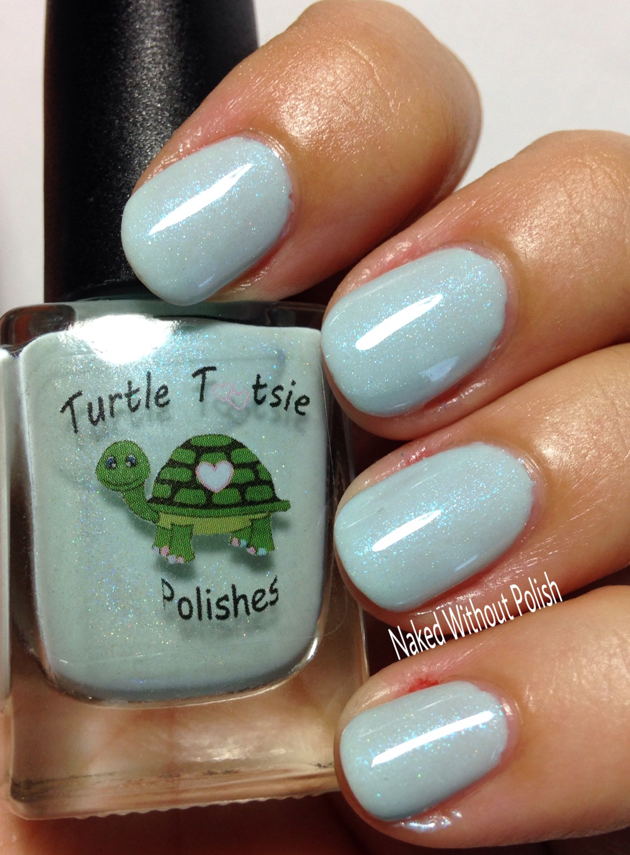 Turtle-Tootsie-Polishes-Immersion-11