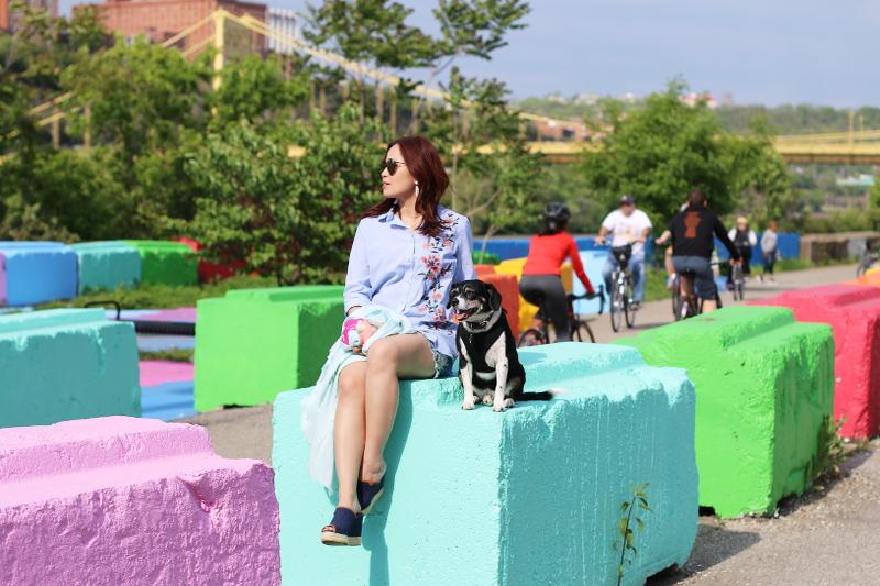 colorful-blocks-shirt-denim-shorts-dog-2
