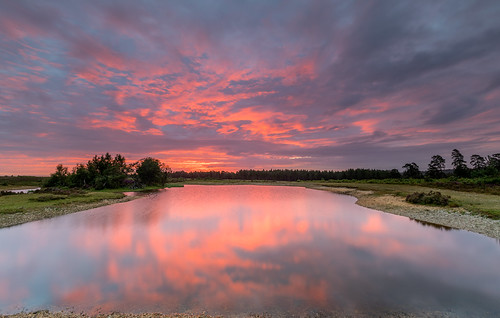 newforest slufters sunrise pond tree water reflection cloud landscape