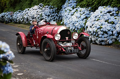 1924 FR5189   being  mugged by hydrangeas . The first supercharged Bentley in the Azores on the Vintage Azores Rally.