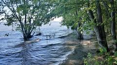 La Plage Nudiste Inond� Par Le Lac Des Deux-Montagnes. 2017 07 05 16:14.30