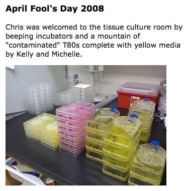April Fool's 2008