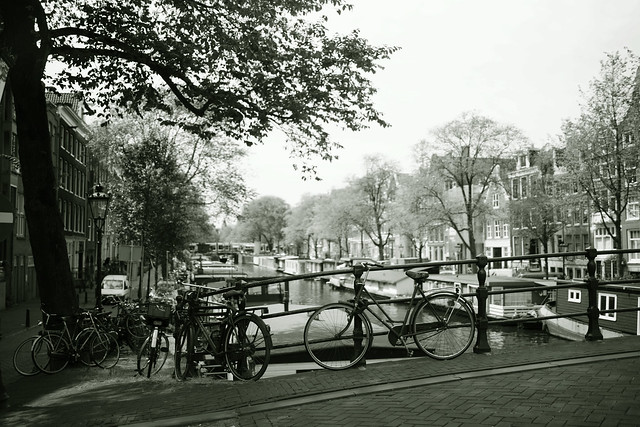 memory of you Amsterdam