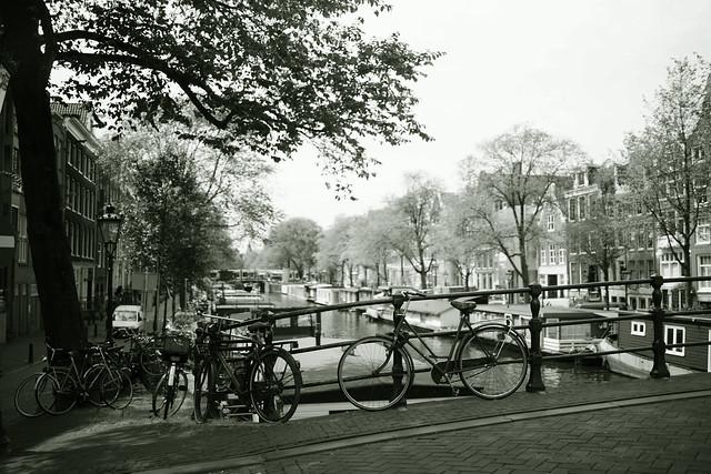 memory of you Amsterdam