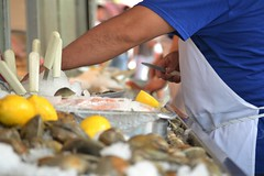Shucking Clams