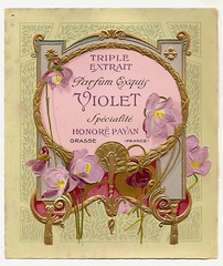 Honore Payan violette