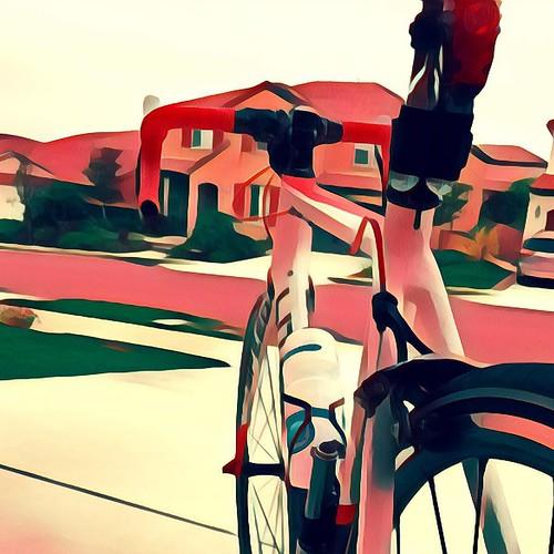 Searching for the sun this morning in a pack of eight. . . #dawnpatrol #velonutz #sandiego @litespeed bike @niteriderlights @speedsleev #prisma #perfume #roadbike #powerpod @ridevelocomp