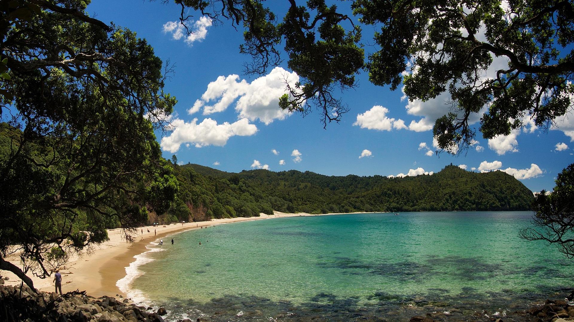 Best Beaches in New Zealand