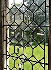 Looking Through The Window HWW