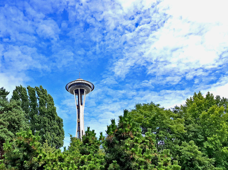 seattle space needle in trees
