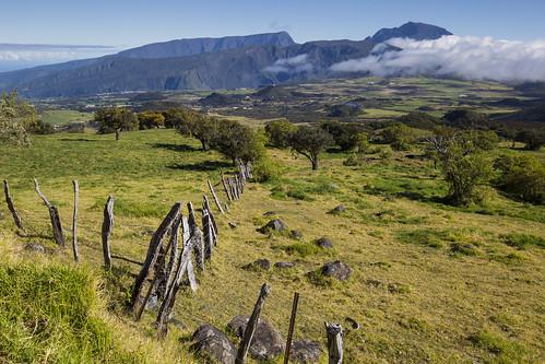 îledelaréunion mistaluis reunionisland nezdeboeuf pitondesneiges rural plains france