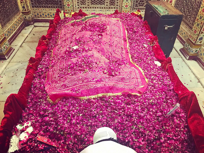 A Stream of Sheikh Peer's Roses for Hazrat Amir Khusro, the Poet-Saint of Delhi