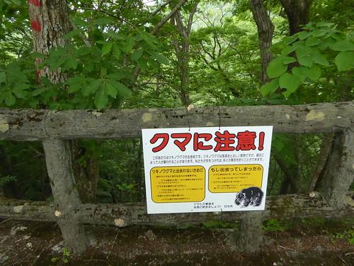 龍王峡 ryuoukyovalley 栃木県日光市 nikkotochigi