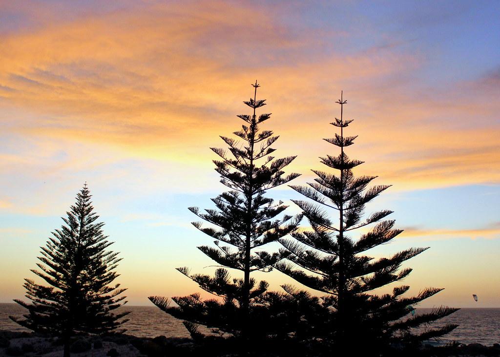 scarborough-beach-sunset