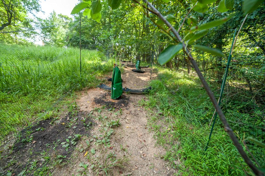 Audubon Naturalist Society - Wood End