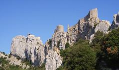 8242 Château de Peyrepertuse