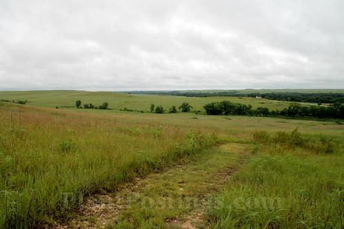 prairie scene 1