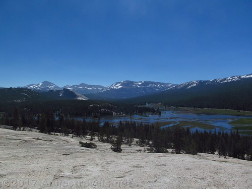Tuolumne Meadows from Pothole Dome in Yosemite National Park, California