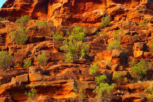 Wild Dog Hill Rocks, Whyalla Conservation Park, South Australia