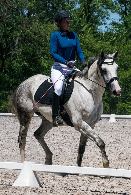 20170709 Grif Dressage Tests-14