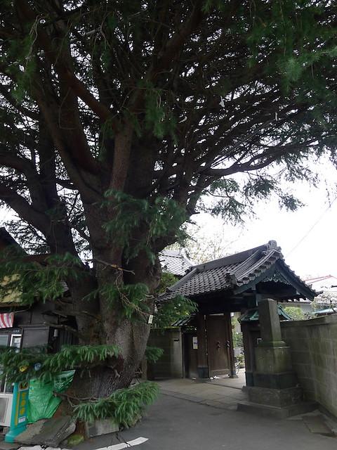 416-Tokyo