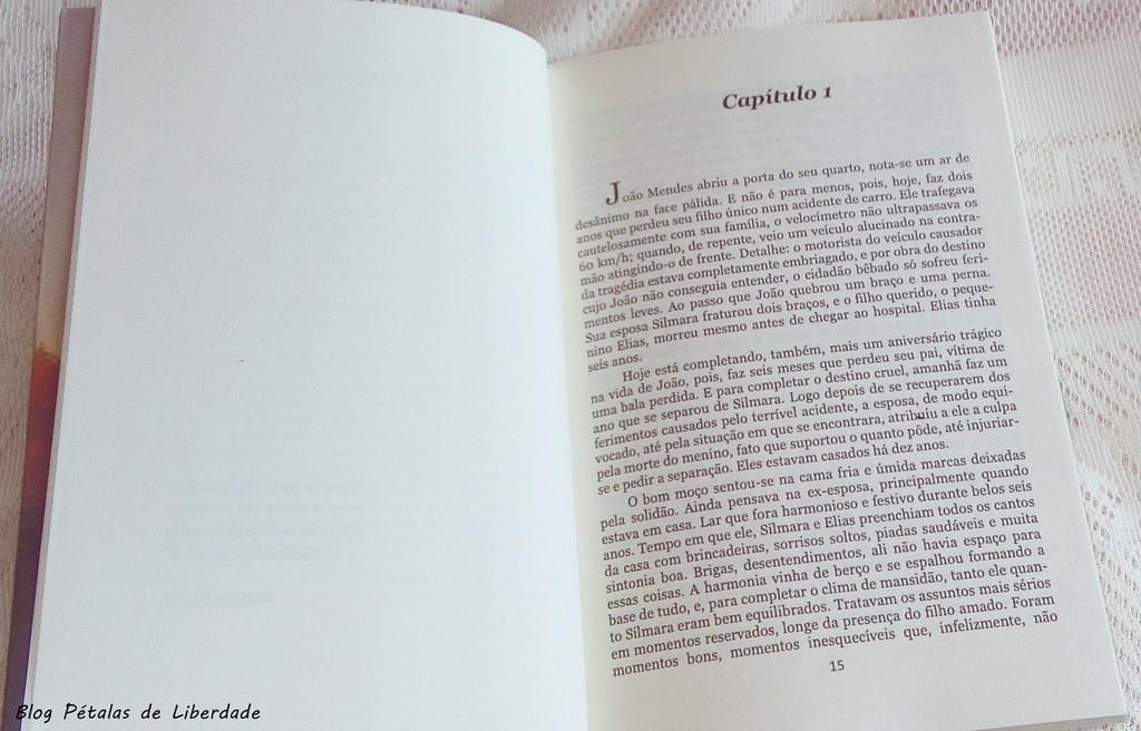 Resenha, livro, O-Recomeço, Paulo-A.-Souza, trecho, opiniao, vingança, blog-literario