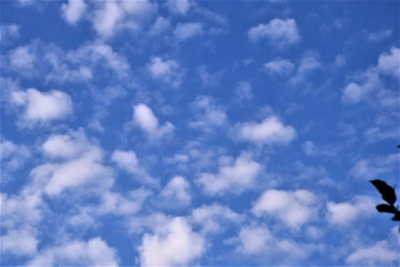 Clouds 18.o07 (1)