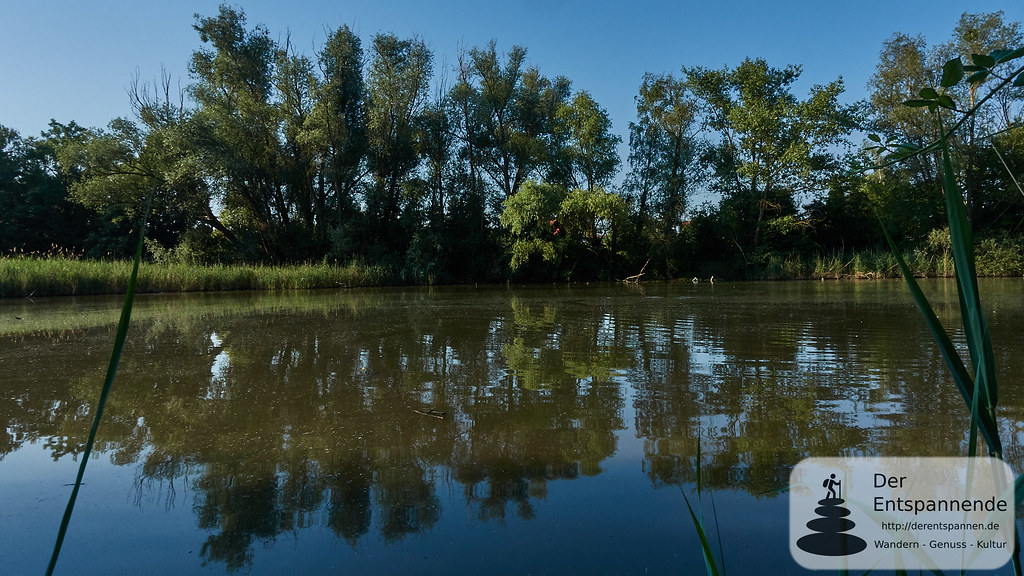 Altrheinsee, Erlebnispfad bei Eich