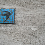 Swallow Tile Mosaic Graffiti