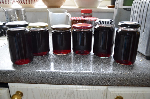 redcurrant jelly July 17 2