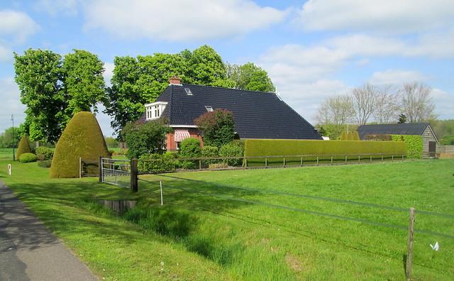 Dutch House + Hedge