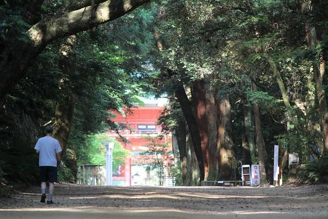 kashimajingu187