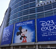 D23 Expo 2017 - Sunday @ The Anaheim Convention Center (07/16/17)