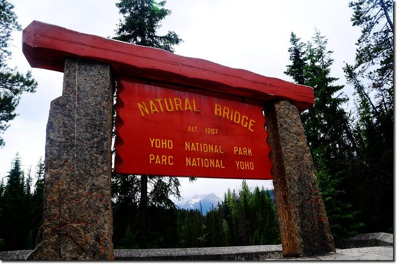 Natural Bridge (1)
