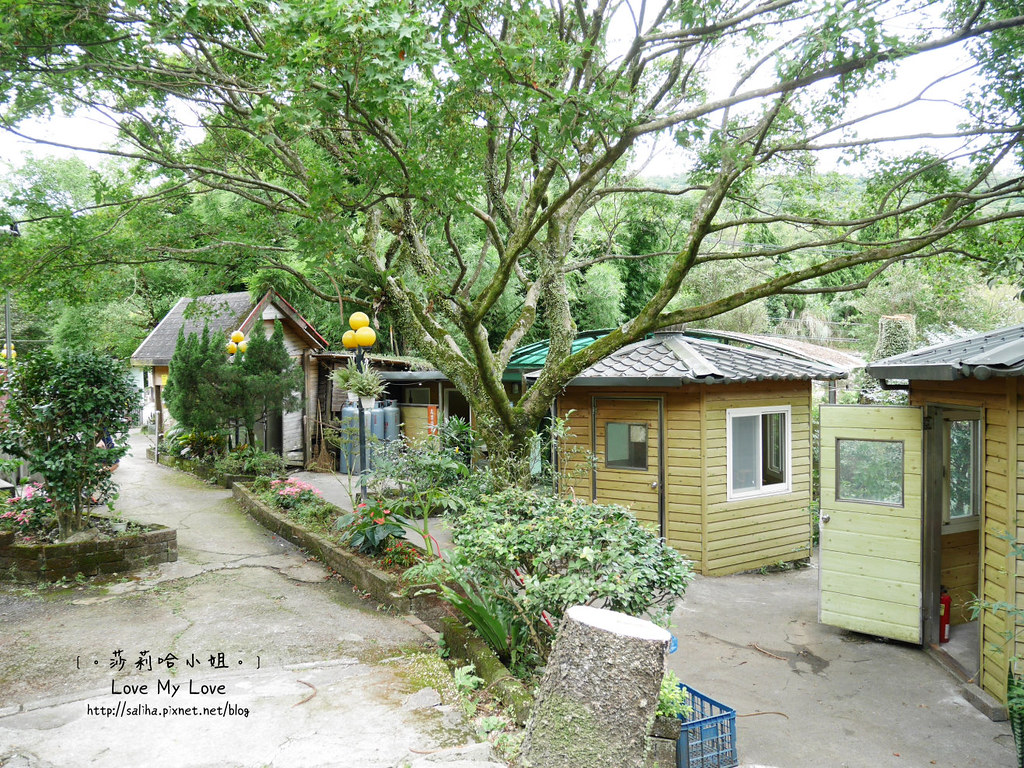 陽明山山產料理餐廳大樹下小饅頭 (36)