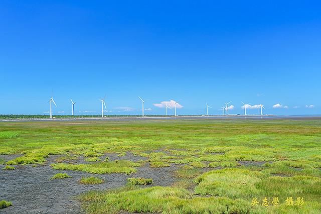 DV05252a--高美濕地,雲林莞草,高美溼地風力發電,台中市,清水區(A7RII,AdobeRGB) - 複製